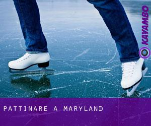 Pattinare a Maryland