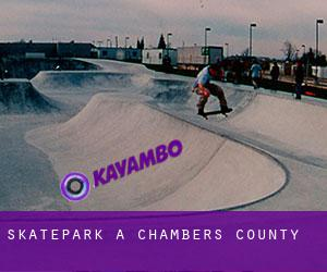 Skatepark a Chambers County