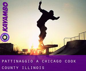 pattinaggio a Chicago (Cook County, Illinois)